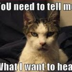 tell me what I want to hear cat meme